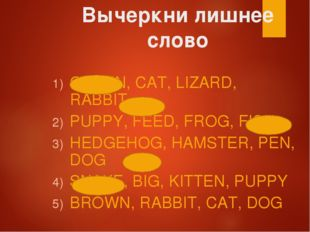 Вычеркни лишнее слово GREEN, CAT, LIZARD, RABBIT PUPPY, FEED, FROG, FISH HEDG