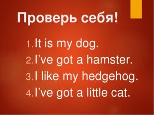Проверь себя! It is my dog. I've got a hamster. I like my hedgehog. I've got