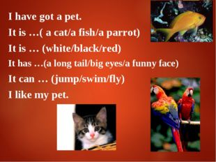 I have got a pet. It is …( a cat/a fish/a parrot) It is … (white/black/red) I