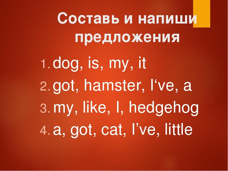 Составь и напиши предложения dog, is, my, it got, hamster, I've, a my, like,...