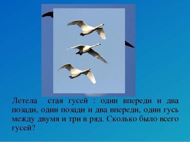 Летела стая гусей : один впереди и два позади, один позади и два впереди, оди...