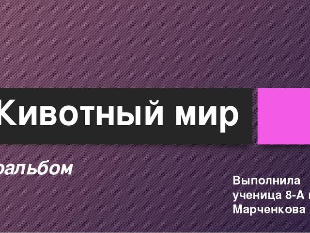Животный мир Фотоальбом Выполнила ученица 8-А класса Марченкова Амина