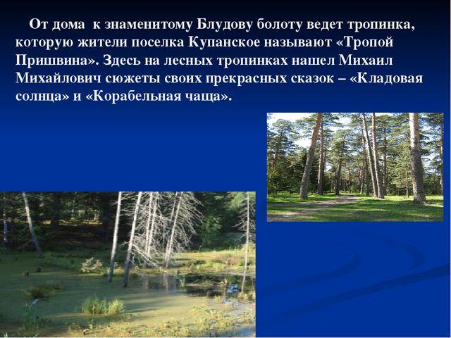 От дома к знаменитому Блудову болоту ведет тропинка, которую жители поселка К...