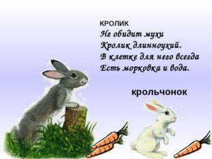 КРОЛИК Не обидит мухи Кролик длинноухий. В клетке для него всегда Есть морков