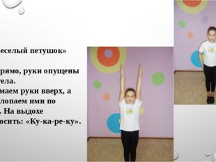 «Веселый петушок» Стоя прямо, руки опущены вдоль тела. Поднимаем руки вверх