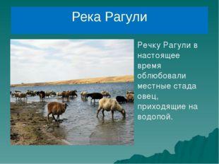 Река Рагули Речку Рагули в настоящее время облюбовали местные стада овец, при