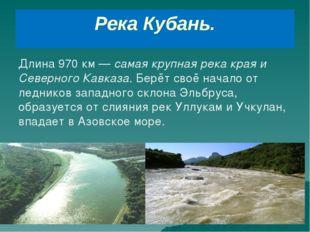 Река Кубань. Длина 970 км — самая крупная река края и Северного Кавказа. Берё