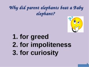 Why did parent elephants beat a Baby elephant? 1. for greed 2. for impoliten
