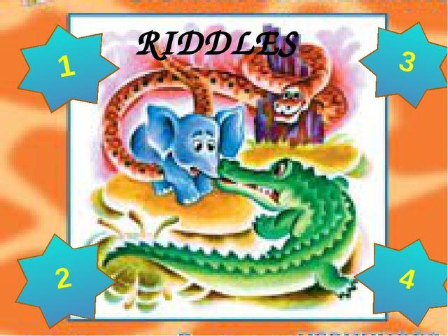 RIDDLES 3 4 2 1