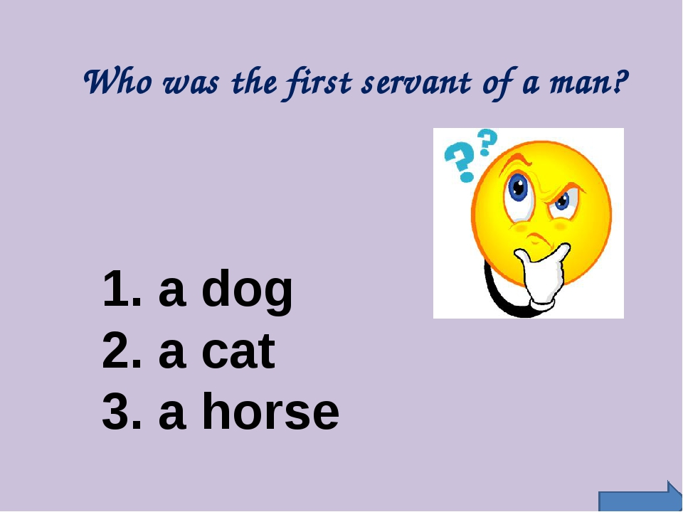 Who was the first servant of a man? 1. a dog 2. a cat 3. a horse