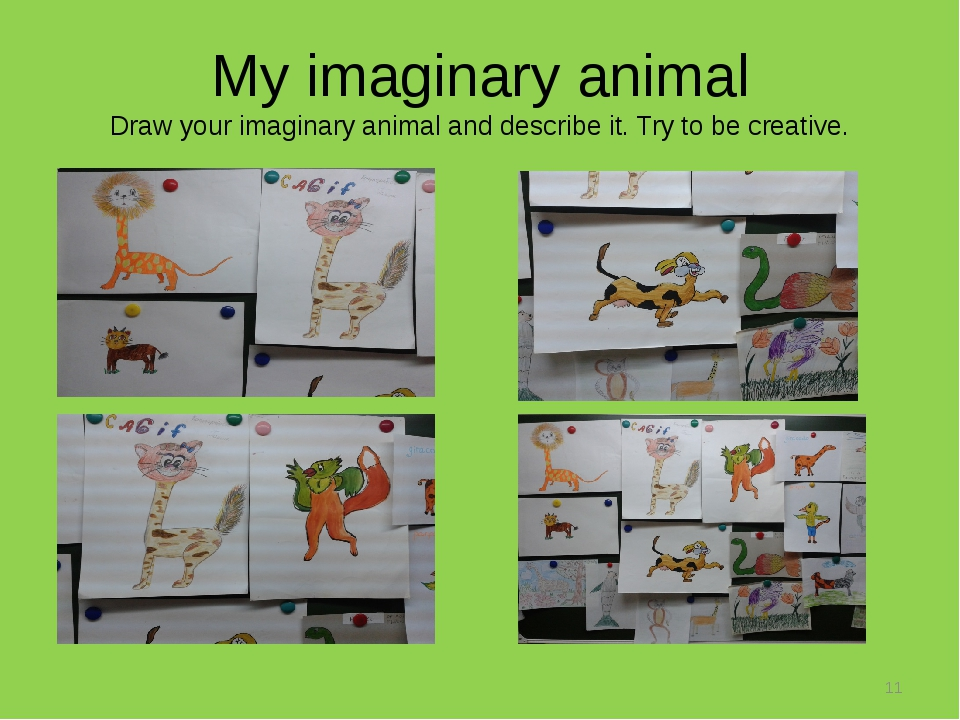 My imaginary animal Draw your imaginary animal and describe it. Try to be cre...