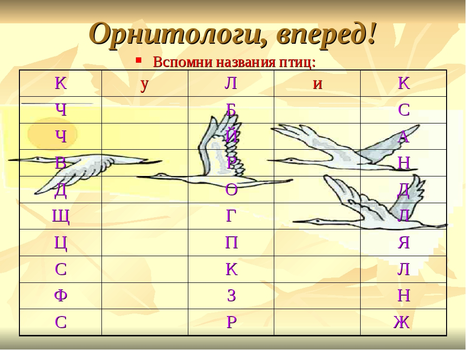 Орнитологи, вперед! Вспомни названия птиц: КуЛиК ЧБС ЧЙА ВРН...