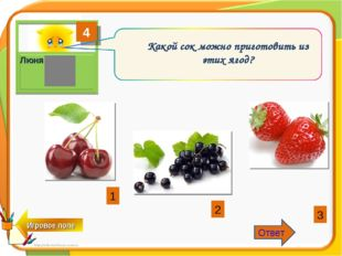 4 Люня Какой сок можно приготовить из этих ягод? 1 2 3 Ответ