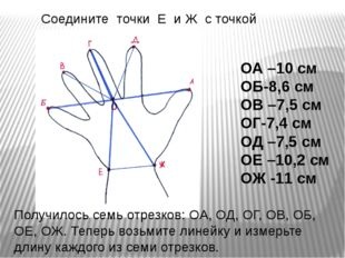 Соедините точки Е и Ж с точкой О Получилось семь отрезков: OA, ОД, ОГ, ОВ, ОБ