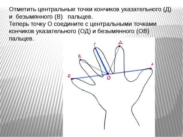 Отметить центральные точки кончиков указательного (Д) и безымянного (В) пальц...
