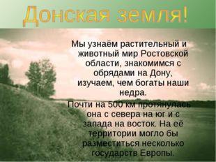 Мы узнаём растительный и животный мир Ростовской области, знакомимся с обряда