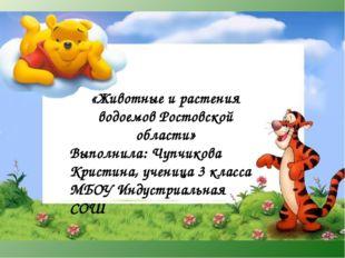 «Животные и растения водоемов Ростовской области» Выполнила: Чупчикова Кристи