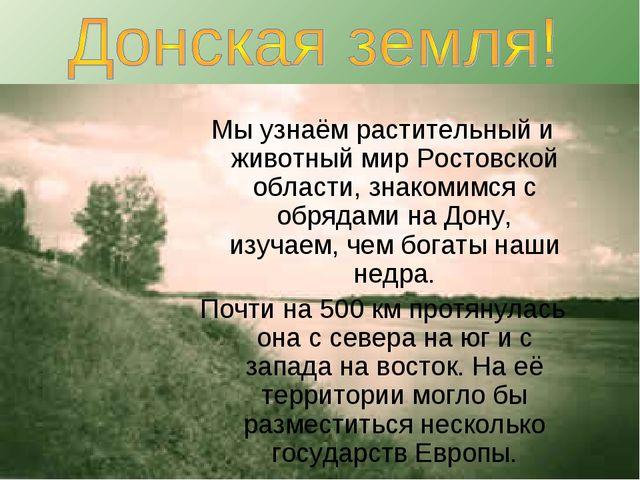 Мы узнаём растительный и животный мир Ростовской области, знакомимся с обряда...