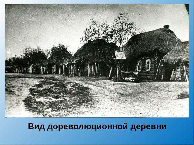 Вид дореволюционной деревни
