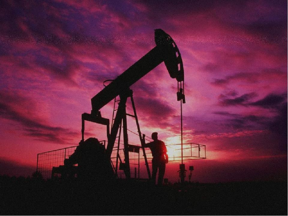 Биогенная теория основана на том, что нефть образовалась из останков древних...