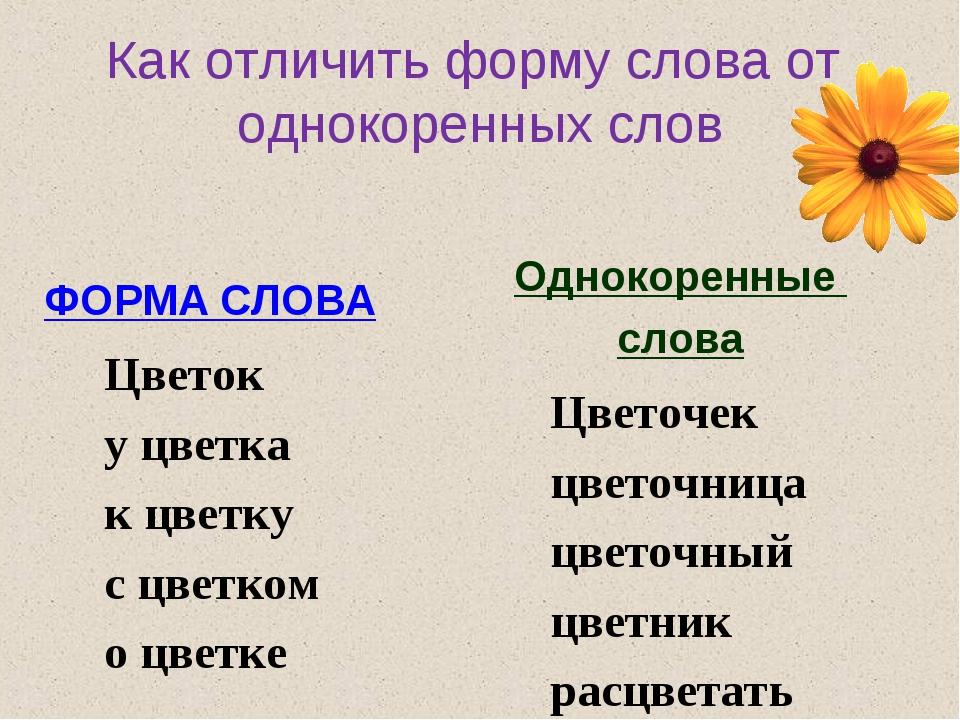Как отличить форму слова от однокоренных слов ФОРМА СЛОВА Цветок у цветка к ц...