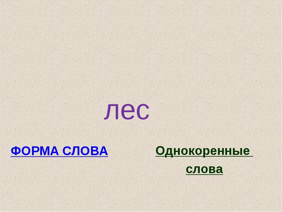 лес ФОРМА СЛОВА Однокоренные слова