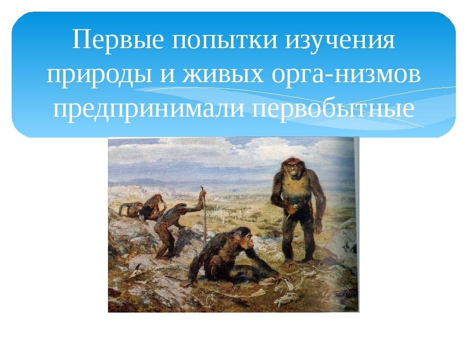 Первые попытки изучения природы и живых организмов предпринимали первобытные...
