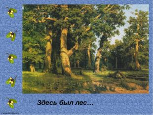 Здесь был лес… FokinaLida.75@mail.ru