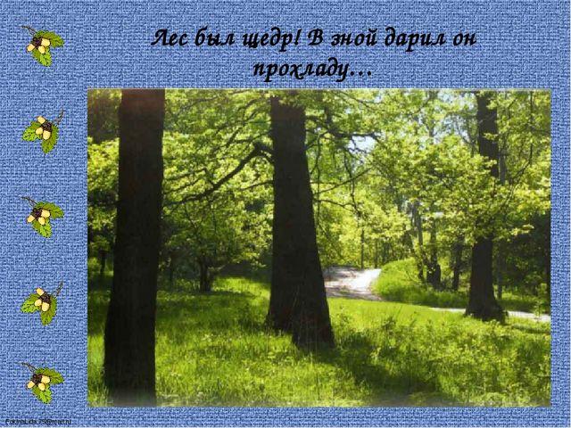 Лес был щедр! В зной дарил он прохладу… FokinaLida.75@mail.ru