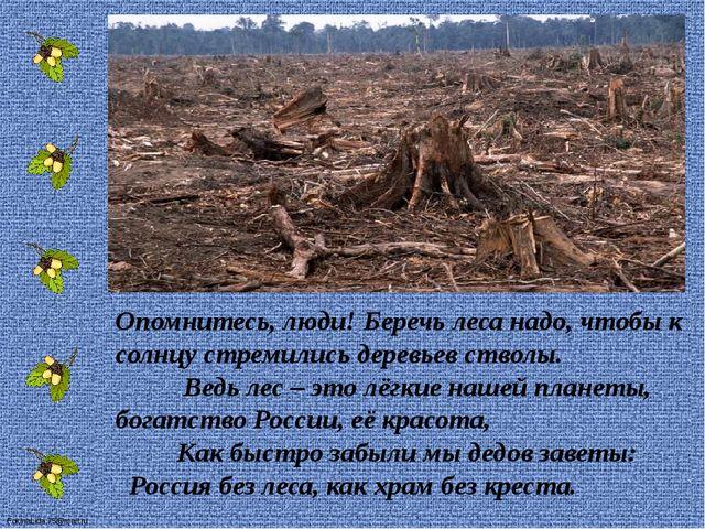 Опомнитесь, люди! Беречь леса надо, чтобы к солнцу стремились деревьев ство...