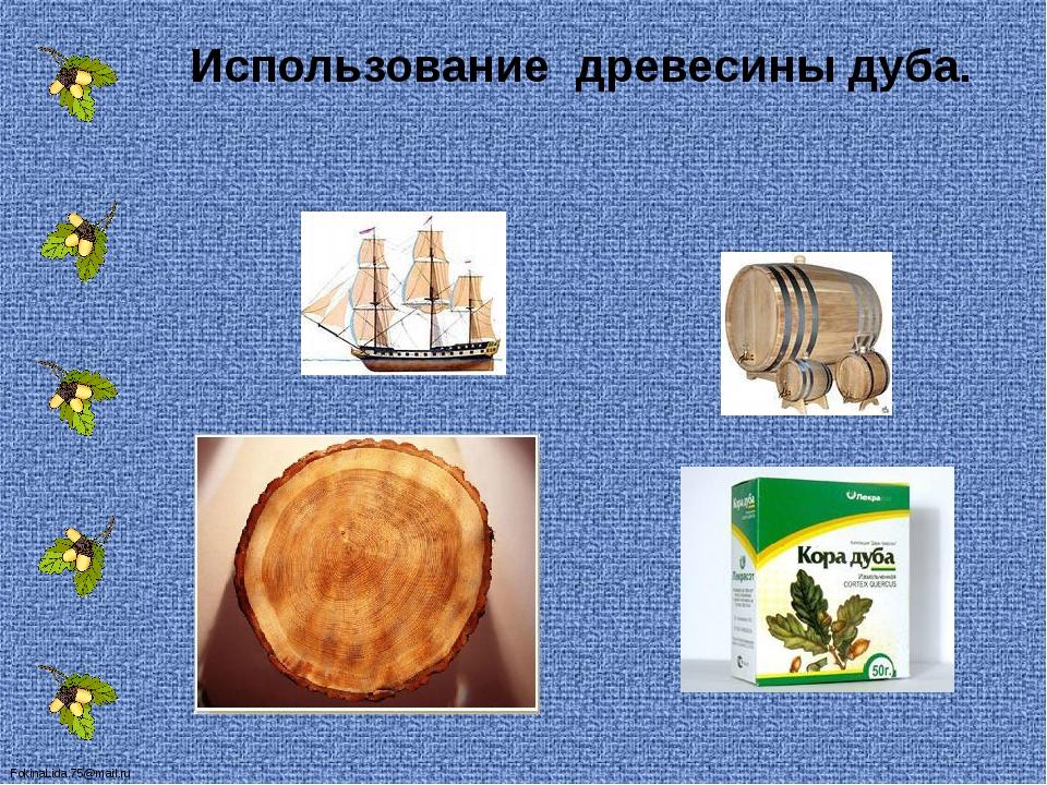 Использование древесины дуба. FokinaLida.75@mail.ru
