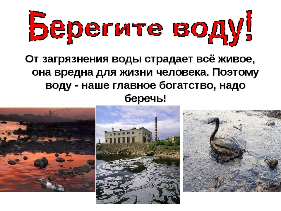 От загрязнения воды страдает всё живое, она вредна для жизни человека. Поэто...