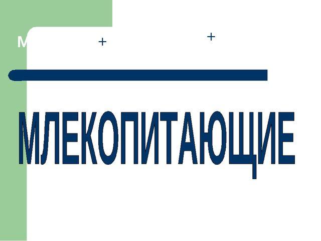 МОЛОКО + ПИТАНИЕ + ЮЩИЕ