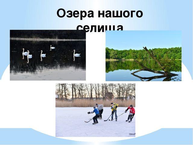 Озера нашого селища