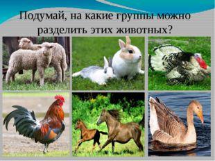 Подумай, на какие группы можно разделить этих животных?