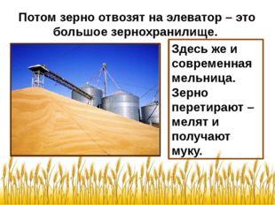 Потом зерно отвозят на элеватор – это большое зернохранилище. Здесь же и совр
