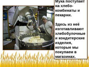 Мука поступает на хлебо-комбинаты и пекарни. Здесь из неё изготавливают хлебо