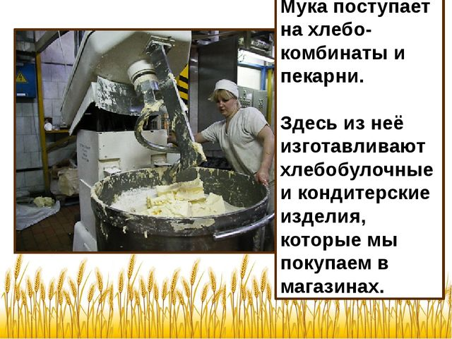 Мука поступает на хлебо-комбинаты и пекарни. Здесь из неё изготавливают хлебо...