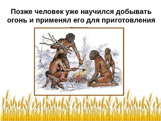 Позже человек уже научился добывать огонь и применял его для приготовления пи...