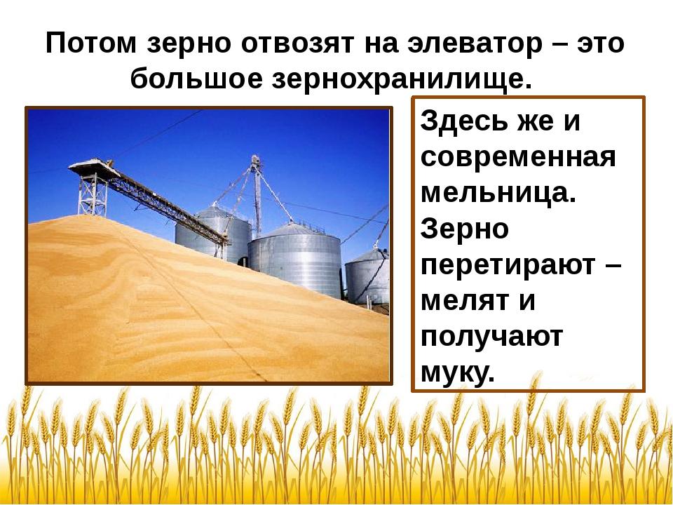 Потом зерно отвозят на элеватор – это большое зернохранилище. Здесь же и совр...
