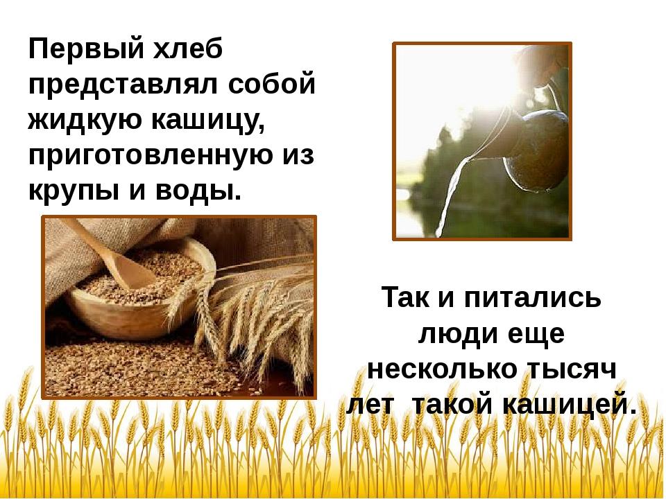 Так и питались люди еще несколько тысяч лет такой кашицей. Первый хлеб предс...