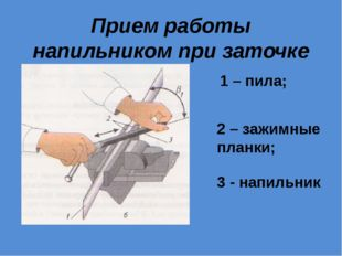Прием работы напильником при заточке 1 – пила; 2 – зажимные планки; 3 - напил