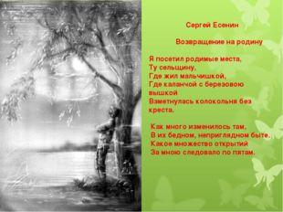 Сергей Есенин Возвращение на родину Я посетил родимые места, Ту сельщину, Где