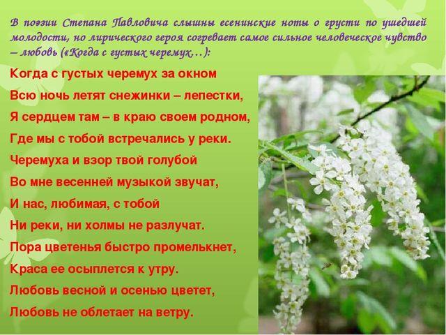 В поэзии Степана Павловича слышны есенинские ноты о грусти по ушедшей молодос...
