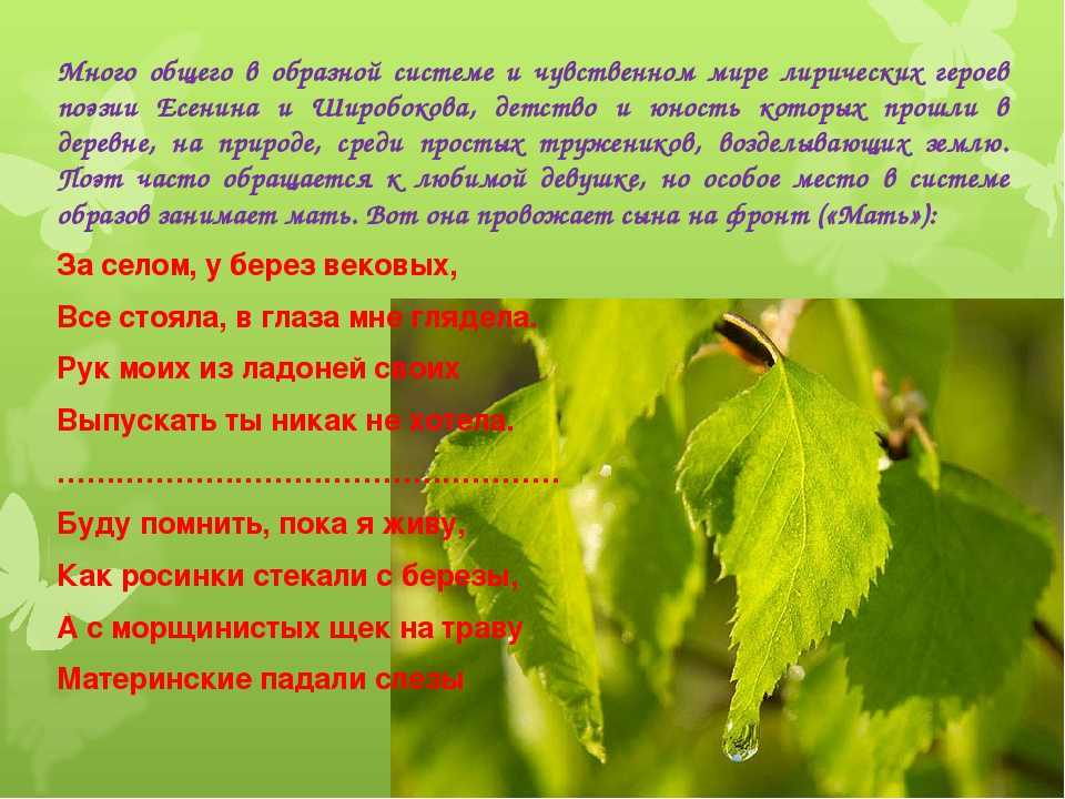 Много общего в образной системе и чувственном мире лирических героев поэзии Е...