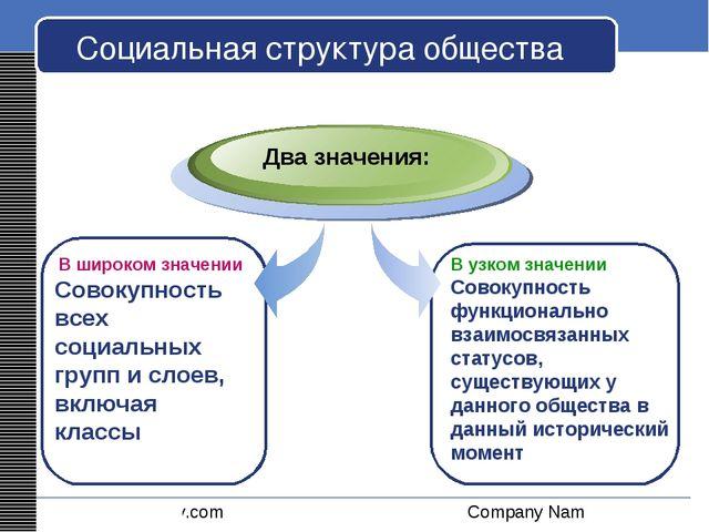 Социальная структура общества В широком значении Совокупность всех социальных...