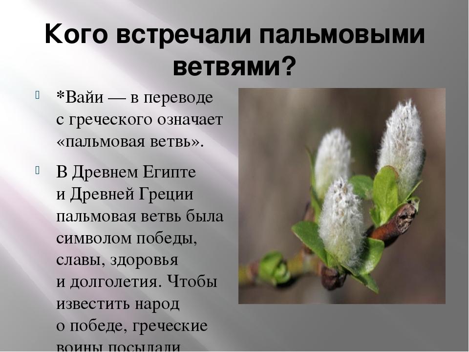 Кого встречали пальмовыми ветвями? *Вайи— впереводе сгреческого означает «...