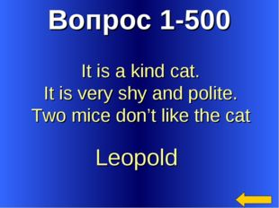 Вопрос 1-500 Leopold It is a kind cat. It is very shy and polite. Two mice do