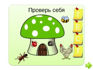 http://www.clker.com/clipart-30066.html -курица; http://www.clker.com/clipar