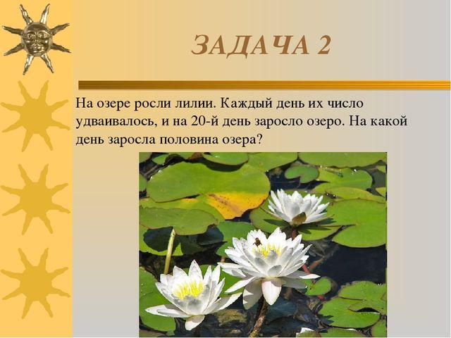 ЗАДАЧА 2 На озере росли лилии. Каждый день их число удваивалось, и на 20-й де...